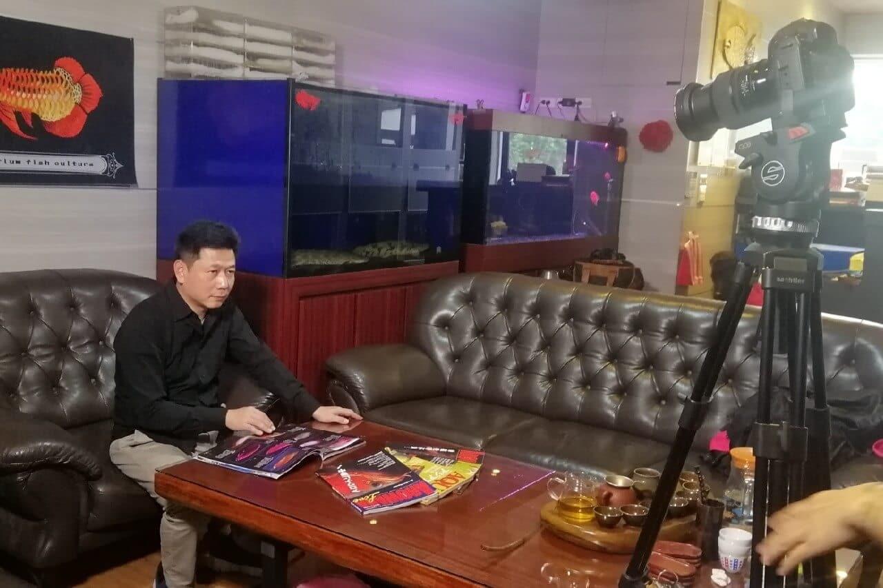 星澤國際-讓世界都看見-電視專訪節目-亞洲專業龍魚